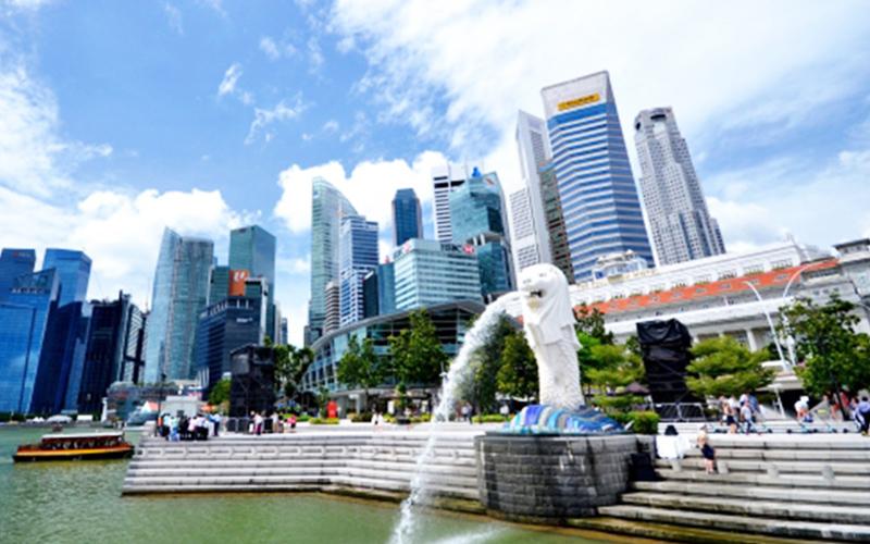 輸出入の申告手続きは更なる簡素化へ。<br>シンガポール発、世界各国を対象とした新たなサービスがいよいよ始まります。